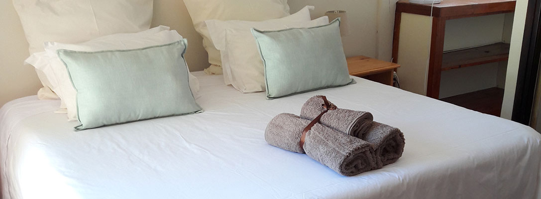 Dolphin, Bed & Breakfast
